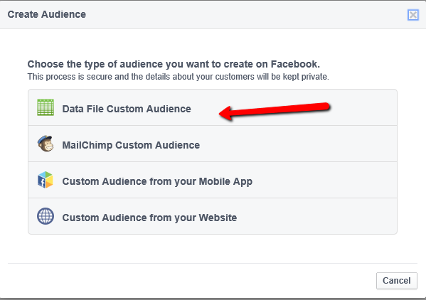 data file custom audience
