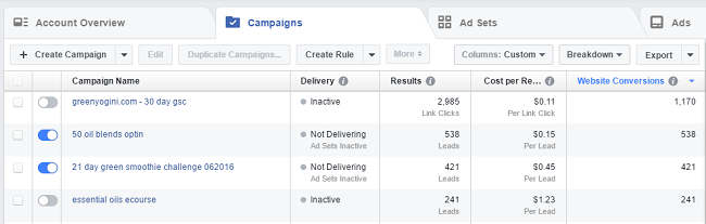 reporting on website conversions