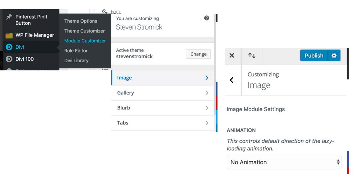 set default image animation in divi